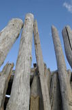 Beach structure. Driftwood logs on the beach arranged in a lean-to structure royalty free stock photography