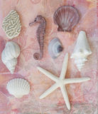 Beach stuff collage Stock Images