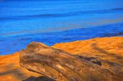 Beach stump. Maui beach sand stump water sea tropical waves brown Stock Photos