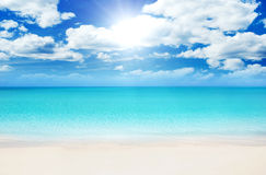 Beach at Summer. Superb Beach at Summertime in the Caribbean Royalty Free Stock Photo