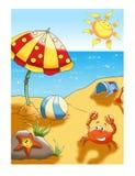 Beach in summer vector illustration