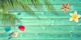 Beach and summer background with blue planks, palm tree branch and seashells. Beach and summer background with blue planks, palm tree branch, seashells Royalty Free Stock Images