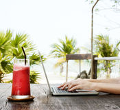 Beach Summer Holiday Vacation Traveling Laptop Technology Concep Stock Photography