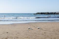 Beach summer landscape Royalty Free Stock Photos