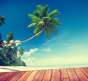 Beach Summer Relaxation Tranquil Scene Concept Royalty Free Stock Images