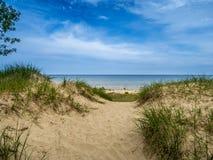 Beach. Summer beach and sand dunes Royalty Free Stock Photos