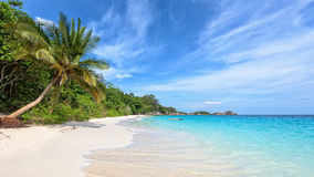 Beach in summer of Thailand. Beautiful landscape of blue sky coconut sea sand and waves on the beach during summer at Koh Miang island in Mu Ko Similan National Royalty Free Stock Photo