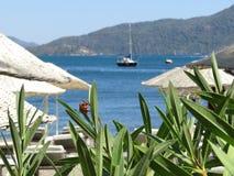 Tropical beach resort on the sea coast. Beach with sunbeds and tropical plants on the sea coast Stock Photo