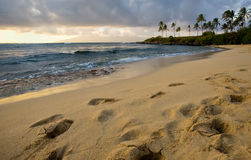 On the Beach at Sundown Royalty Free Stock Photos