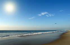 Beach at sunrise, Atlantic ocean coast. MD, USA Stock Photos