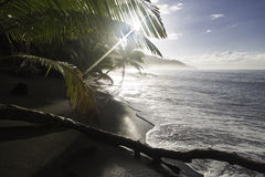Beach at sunrise, Corcovado National Park, Costa Rica. One of the many stunning beaches one encounters on the hike between Carate and La Sirena Ranger Stations Stock Photos