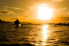 Beach sunset. Sunset over ocean with surfers royalty free stock photo