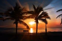 Beach, Sunset, Bench Royalty Free Stock Photo