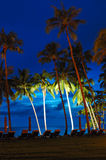 Beach at sunset with illuminated coconut palms Royalty Free Stock Images