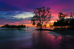 Beach during sunset Stock Image