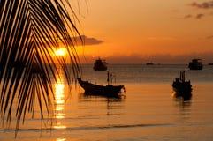 Beach on sunset Royalty Free Stock Image