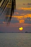 Beach sunset Stock Images