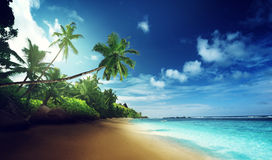 Beach in sunset time on Mahe island Royalty Free Stock Image