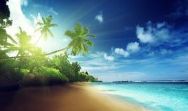 Beach in sunset time on Mahe island Stock Photos