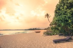 Beach sunset travel vacation lifestyle landscape with palm trees wide sand coastline waves with scenic orange sunset sky in Sri La. Nka on Tangalle beach stock photo