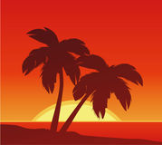 Beach Sunset. With two palms stock illustration
