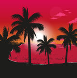 Beach At Sunset. Vector illustration of a beach at sunset time with coconut palm trees Stock Image