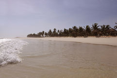 Beach with sunshades. Lonely at the beach with sunshades and palms royalty free stock images