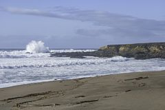 Beach and Surf at Monterey Bay Marine Sanctuary royalty free stock photography