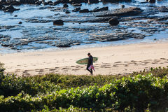 Surfer Walking Beach Rocks Vegetation Stock Image