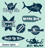 Beach and Surfing Labels and Stickers. Collection of vintage style beach and surfing labels and badges Royalty Free Stock Photo