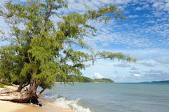 Beach in surroundings of a Sihanoukville holiday resort in Cambodia. Cambodia. The beautiful coast Botum Sakor National Park near Sihanoukville To get to the Stock Image