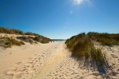 Beach in sweden Stock Photos