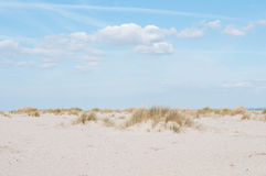 beach on sylt island stock image