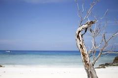 Beach of Tachai Island, Similan National Park, Thailand Royalty Free Stock Photography