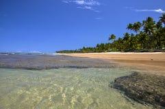 Beach of Taipu de Fora, Bahia (Brazil). Beach at low tide with palms on background, Taipu de Fora - Bahia (Brazil stock images