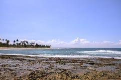 Beach of Taipu de Fora, Bahia (Brazil). Beach at low tide with palms on background, Taipu de Fora - Bahia (Brazil royalty free stock photos
