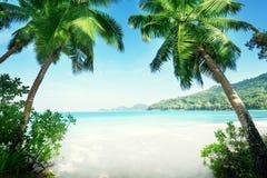 Beach Takamaka, Mahe island Royalty Free Stock Images