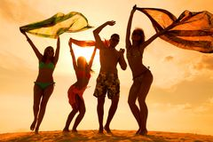 Free Beach Teens Party Stock Image - 38861251