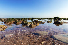 Beach Teignmouth. Showing calm water washing over rocks on a Teingmouth beach Stock Images