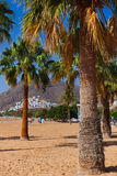 Beach Teresitas in Tenerife - Canary Islands Stock Image