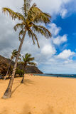 Beach Teresitas in Tenerife - Canary Islands Spain Royalty Free Stock Photos