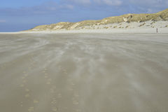 Beach Terschelling, The Netherlands Royalty Free Stock Photography