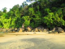 Beach Thailand. Nature Royalty Free Stock Photo