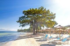 Beach in Thasos, greek island. Beach & x28;Pachis& x29; in Thasos island, Greece, crystal clear Aegean Sea water Stock Image