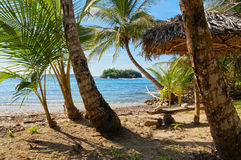 Beach with thatched umbrella and coconut trees Royalty Free Stock Images