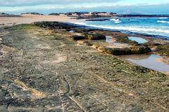 Beach tide. Rock or hard sand formations that show up at low tide, with different inscriptions. Corralejo beach, Fuerteventura, Canaries Royalty Free Stock Photos