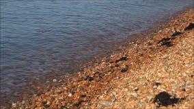 Beach tide waves stock video