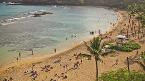 Beach Time Lapse People & Snorkeling Above. V34. Hanauma Bay Beach Park time lapse clip from above with people snorkeling and on beach stock video footage