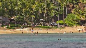 Beach Time Lapse People & Snorkeling Pan stock footage
