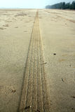 Beach Tire Track Royalty Free Stock Photography